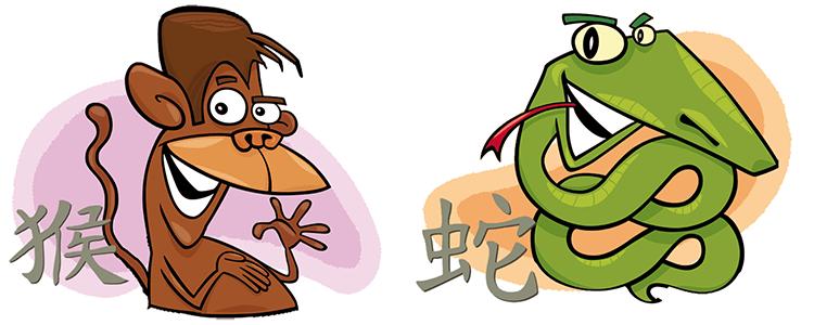 Affe und Schlange Partner Horoskop