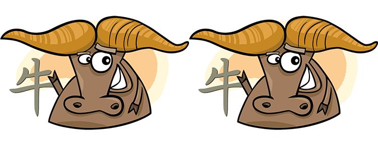 Büffel und Büffel Partner Horoskop