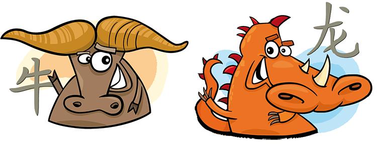 Büffel und Drache Partner Horoskop
