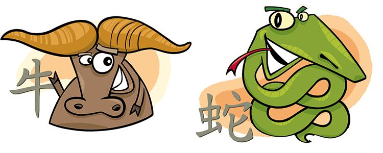 Büffel und Schlange Partner Horoskop