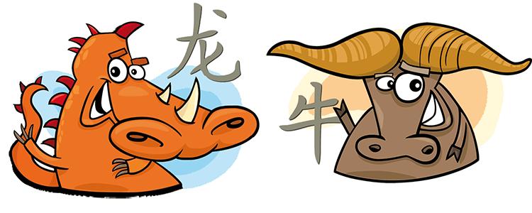 Drache und Büffel Partner Horoskop