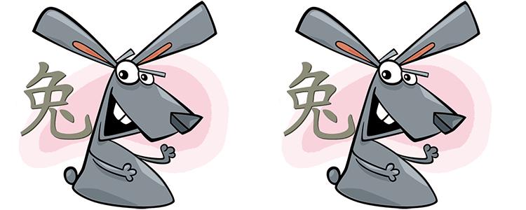 Hase und Hase Partner Horoskop
