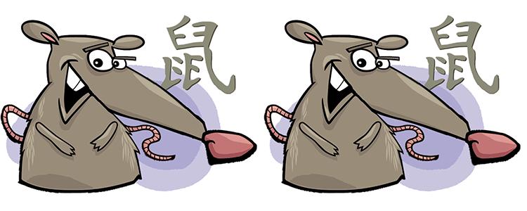 Ratte und Ratte Partner Horoskop
