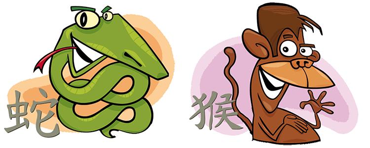 Schlange und Affe Partner Horoskop