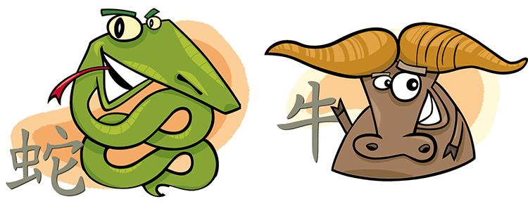 Schlange und Büffel Partner Horoskop