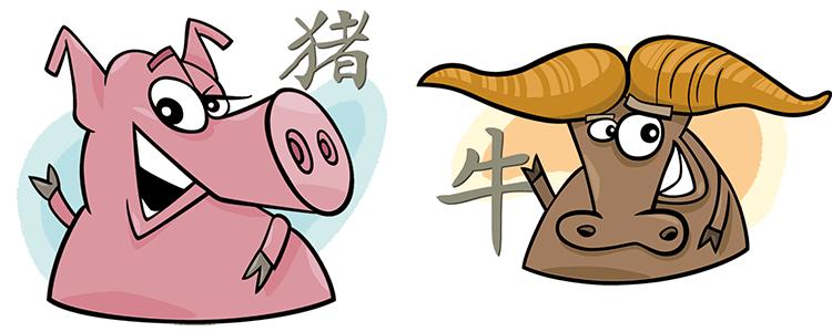 Schwein und Büffel Partner Horoskop