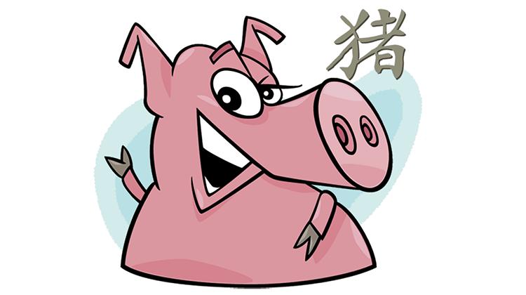 Schwein Partner Horoskop