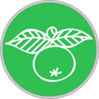 Keltisches Baumhoroskop Apfelbaum