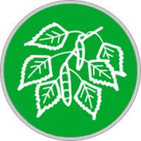 Keltisches Baumhoroskop Birke