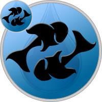 Fische und Fische Partner