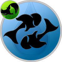 Fische und Jungfrau Partner