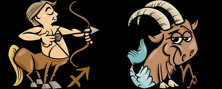 Schütze und Steinbock Partner Horoskop