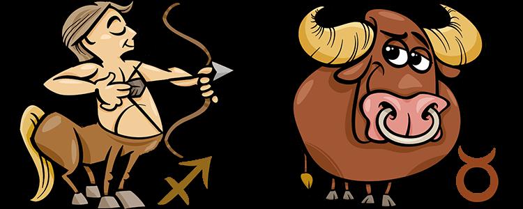 Schütze und Stier Partner Horoskop