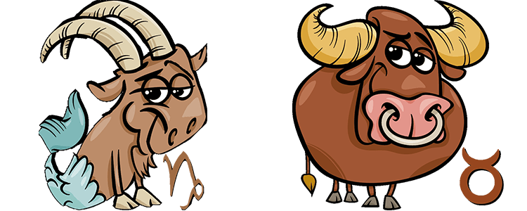 Steinbock und Stier Partner Horoskop