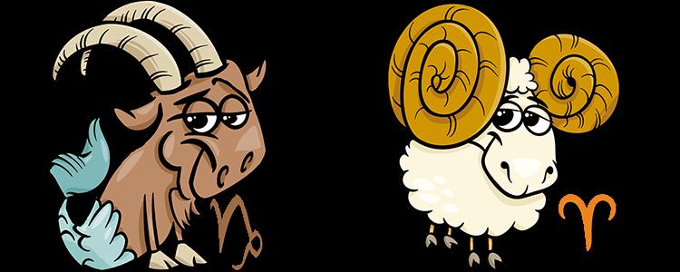 Steinbock und Widder Partner Horoskop