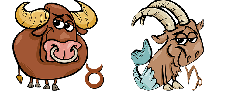Stier und Steinbock Partner Horoskop