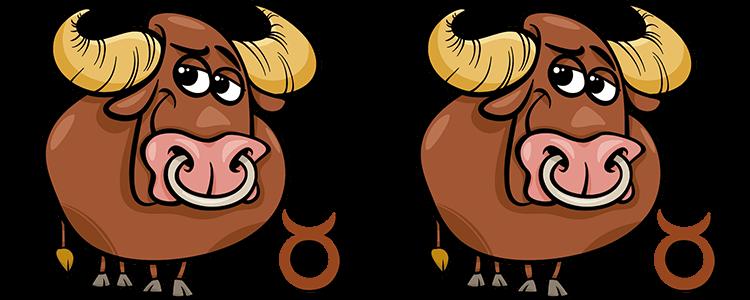 Stier und Stier Partner Horoskop