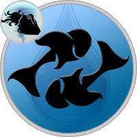 Fische und Wassermann Partner