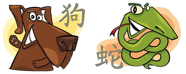 Собака и Змея Совместимость по Китайскому Гороскопу