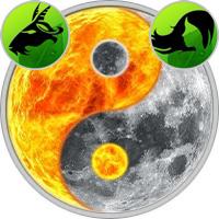 Sun in Capricorn — Moon in Virgo