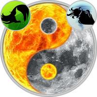 Sun in Virgo — Moon in Aquarius